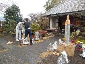 Japanese tradition – Kadomatsu