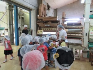 Class in tea factory
