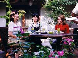 サガテレビ 「かちかちワイド、食べるお茶」