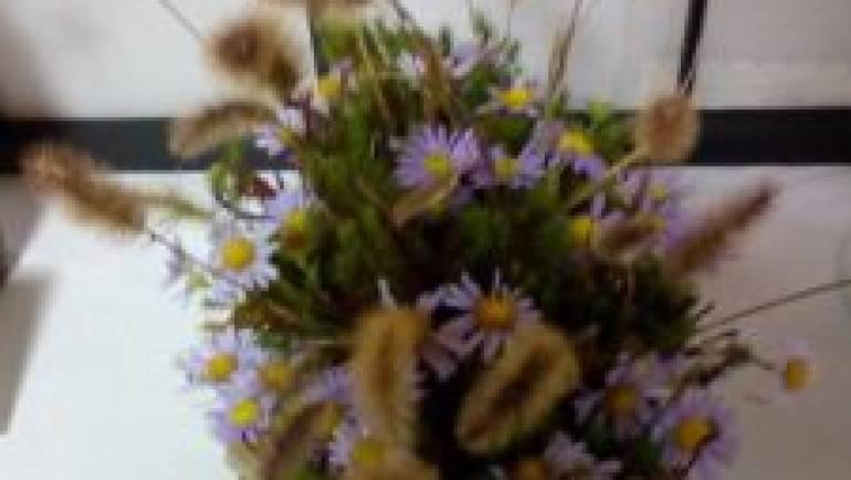 秋の野花展