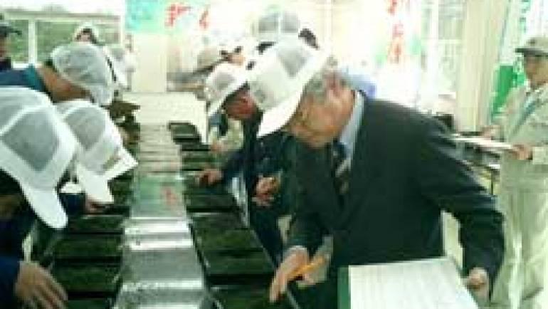 平成十六年度産うれしの新茶初入札会