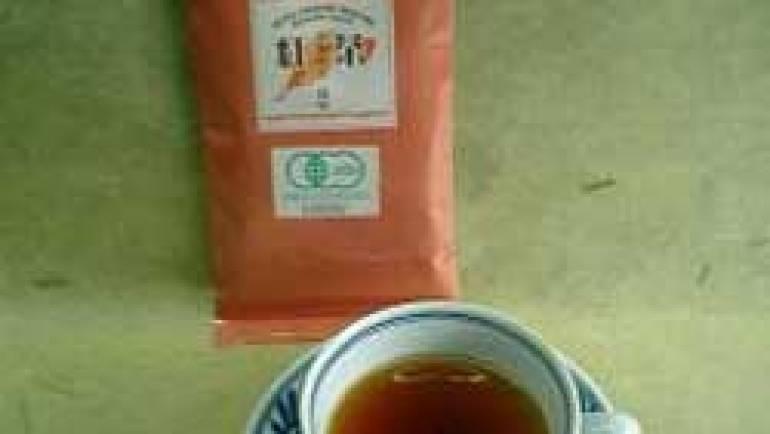おいしい有機栽培嬉野紅茶はいかがですか?