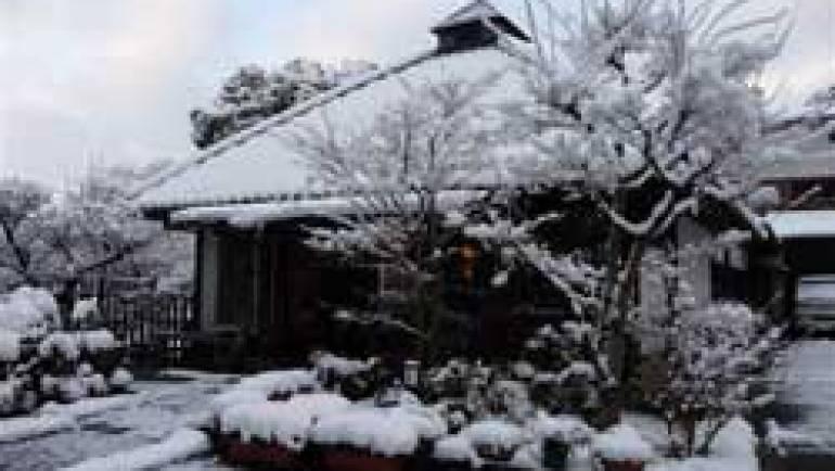 茶荘徳永の雪景色です。