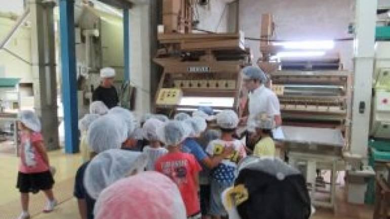 嬉野小学校二年生の「まち探検」