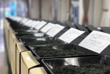 全国茶品評会